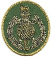 British Royal Marines Patch 002.jpeg