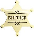 SHERIFF BADGE - GOLD 40072GL[1].jpeg