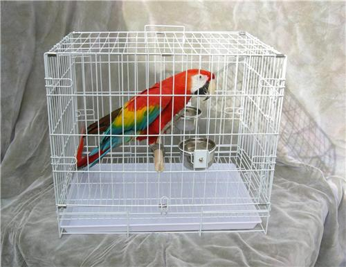 AllPets- Travel Cage- Large- for Too's, Macaws- white coated steel