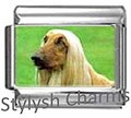AFGHAN HOUND DOG Photo Italian Charm 9mm Link - 1 x DG017 Single Bracelet Link