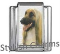 AFGHAN HOUND DOG Photo Italian Charm 9mm Link - 1 x DG018 Single Bracelet Link