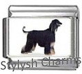 AFGHAN HOUND DOG Photo Italian Charm 9mm Link - 1 x DG021 Single Bracelet Link