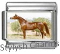 HORSE CHESTNUT MARE Photo Italian Charm 9mm Link - 1 x HO036 Single Bracelet Link