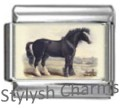 HORSE BLACK STALLION Photo Italian Charm 9mm Link- 1x HO049 Single Bracelet Link