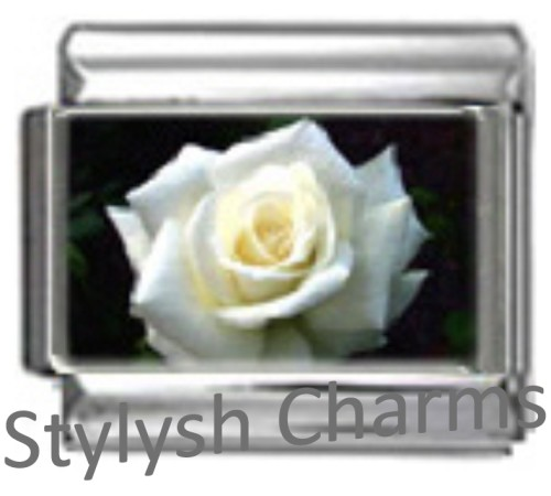 GA006 Italian Charm ROSE WHITE LOVE Photo Charm
