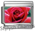 ROSE RED FLOWER Photo Italian Charm 9mm Link - 1x GA008 Single Bracelet Link