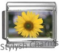 SUNFLOWER FLOWER Photo Italian Charm 9mm Link - 1x GA010 Single Bracelet Link
