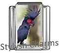 PARROT BIRD Photo Italian Charm 9mm Link - 1 x BI205 Single Bracelet Link
