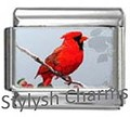 BI005 Italian Charm NORTHERN CARDINAL BIRD Photo Charm