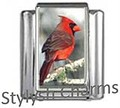 BI010 Italian Charm NORTHERN CARDINAL BIRD Photo Charm