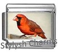 BI011 Italian Charm RED CARDINAL BIRD Photo Charm
