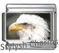 BI023 Italian Charm BALD EAGLE BIRD Photo Charm