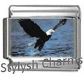 BI024 Italian Charm BALD EAGLE IN FLIGHT Photo Charm