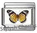 BI031 Italian Charm BUTTERFLY INSECT Photo Charm