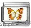 BI038 Italian Charm BUTTERFLY INSECT Photo Charm