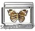 BI039 Italian Charm BUTTERFLY INSECT Photo Charm