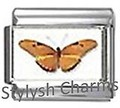 BI042 Italian Charm BUTTERFLY INSECT Photo Charm