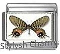 BI044 Italian Charm BUTTERFLY INSECT Photo Charm