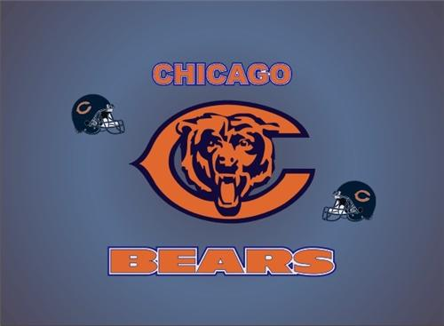 bears laptop skin.jpg 10/24/2009