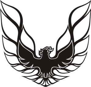 Pontiac Trans Am Firebird Pillar Bird Decal