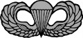 army jump wings.jpg