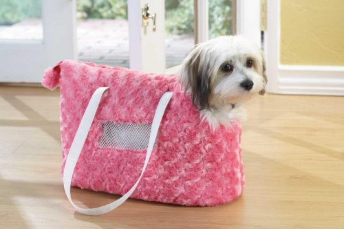 pink pet carrier.jpg