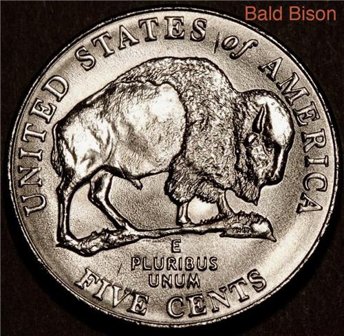 2005 Bald Bison Nickel Worn Die Error