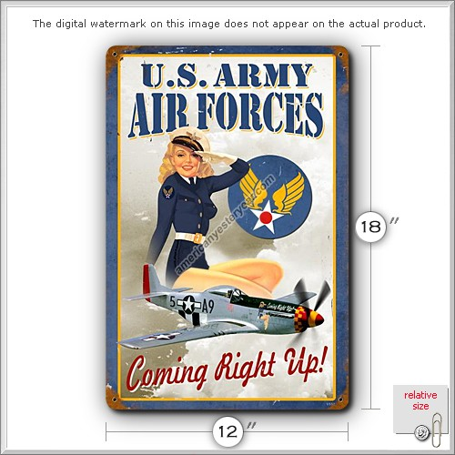 US Army Air Forces Pin-Up Metal Sign