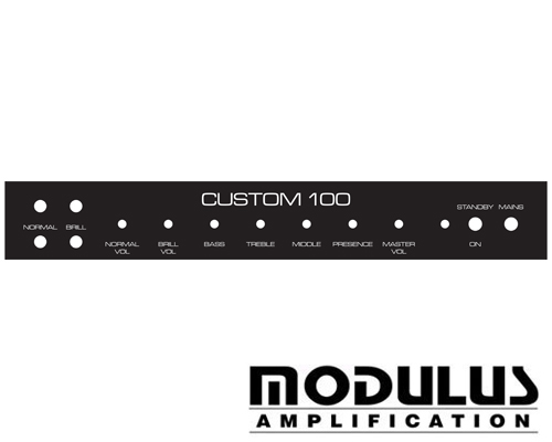 hiwatt faceplates custom 100