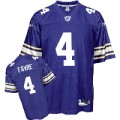 Minnesota Vikings  Brett Favre nfl youth Jersey.jpeg