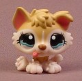 Littlest Pet Shop #1013 Tan & Cream Baby Husky Puppy Dog With Fancy Blue Eyes, Tongue Sticking Out