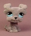 Littlest Pet Shop #1006 Fuzzy Or Flocked Gray Schnauzer Puppy Dog With Blue Eyes