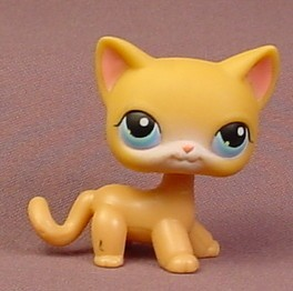 Lps Shorthair Cat Number 72 Cute Cat 2018