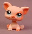 Littlest Pet Shop #1220 Pink Pig With Aqua Blue Green Eyes, Peach Ring Around One Eye