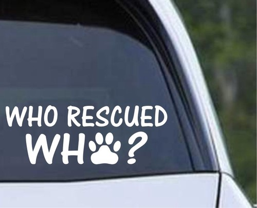 Who Rescue Who.jpeg