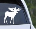 Moose Decal.jpeg