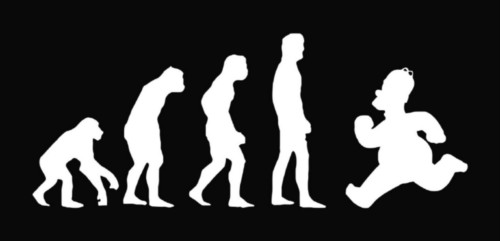 Evolution - Simpsons.jpg_Thumbnail1.jpg.jpeg