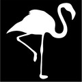 flamingo standing on one leg silhouette.jpeg