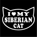 i heart my siberian cat.jpeg