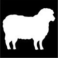 sheep silhouette.jpeg