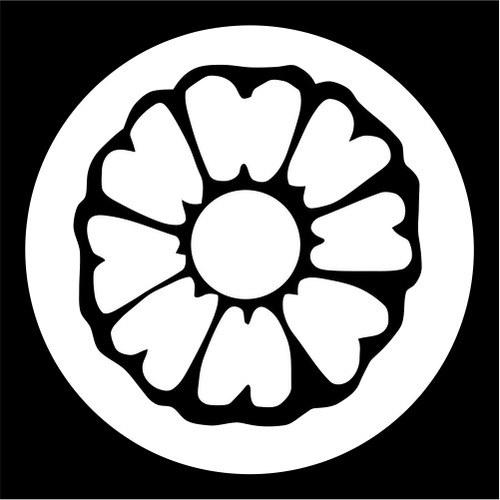 Image result for White Lotus Avatar
