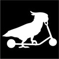 cockatoo riding a scooter.jpeg