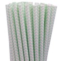 Mint Green Chevron Paper Straws.jpeg