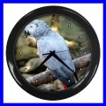 Wall Clock AFRICAN GREY PARROT Bird Pet Animal Zoo Boys (11776710)