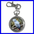 Key Chain Pocket Watch AFRICAN GREY PARROT Bird Pet Vet (12155670)