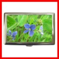 Cigarette Card Money Box GERMANDER SPEEDWELL Flower New (16343905)