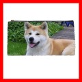 Pencil Case Pen Bag AKITA DOG Pet Puppy Animal Vet Gift (22100580)