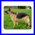 Mousepad Mouse Mat Pad GERMAN SHEPHERD Animal Dog Puppy Pet Vet (11935748)