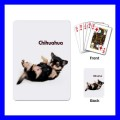 Playing Cards Poker Deck CHIHUAHUA Dog Puppy Pet Vet Animal Tech (15481519)