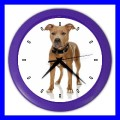 Color Wall Clock AMERICAN PIT BULL TERRIER Dog Puppy Pet Vet Tech (27201154)